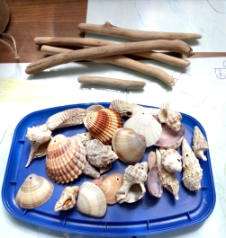 shell mobile 2